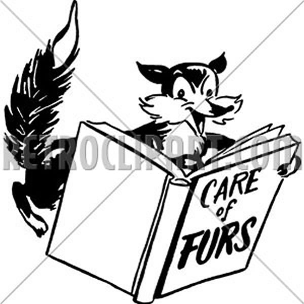 Care Of Furs