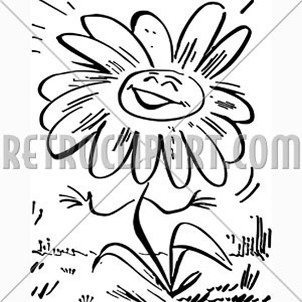 Smiling Daisy Flower